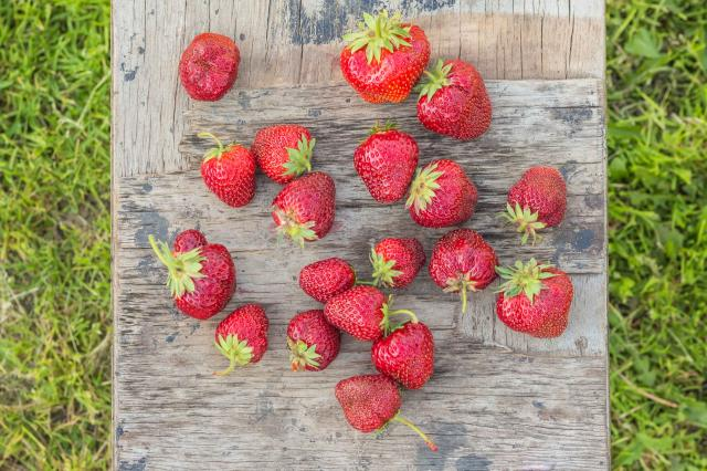 Strawberries on a wooden board vintage