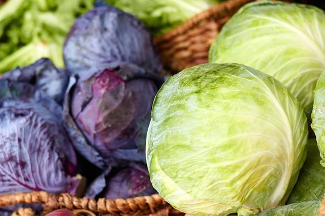 14. Cabbage