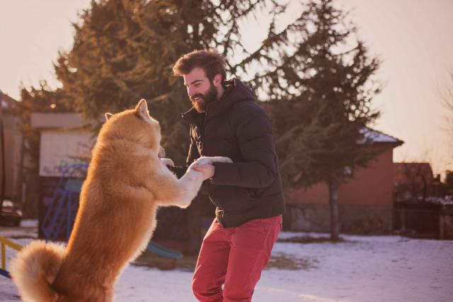 Bearded hipster guy playing with the dog