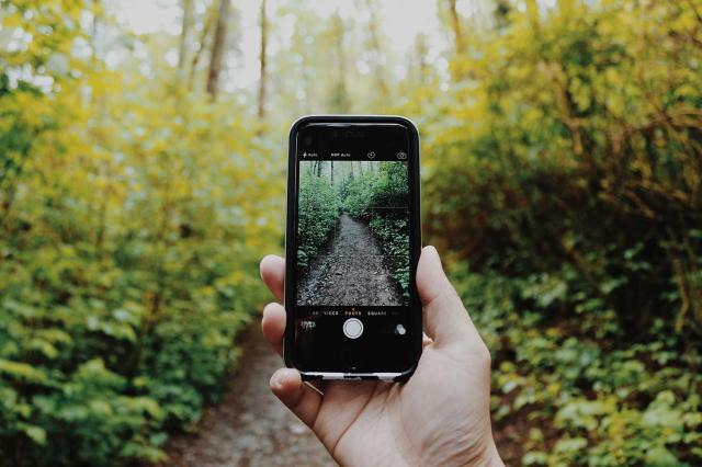 6. Post on Social Media or Use an Accountability App