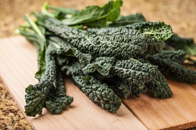 Vibrant bunch of freshly harvested lacinato kale