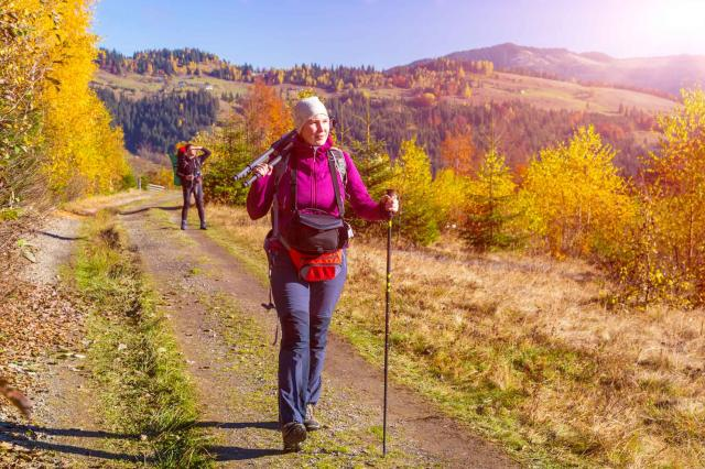 Two Hikers Walking on Pathway in Autumnal Forest