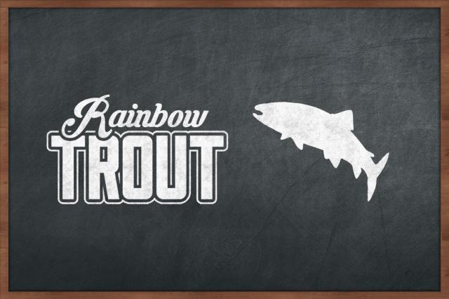 10. Rainbow Trout