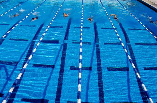 Swimmers Racing in Marked Lanes